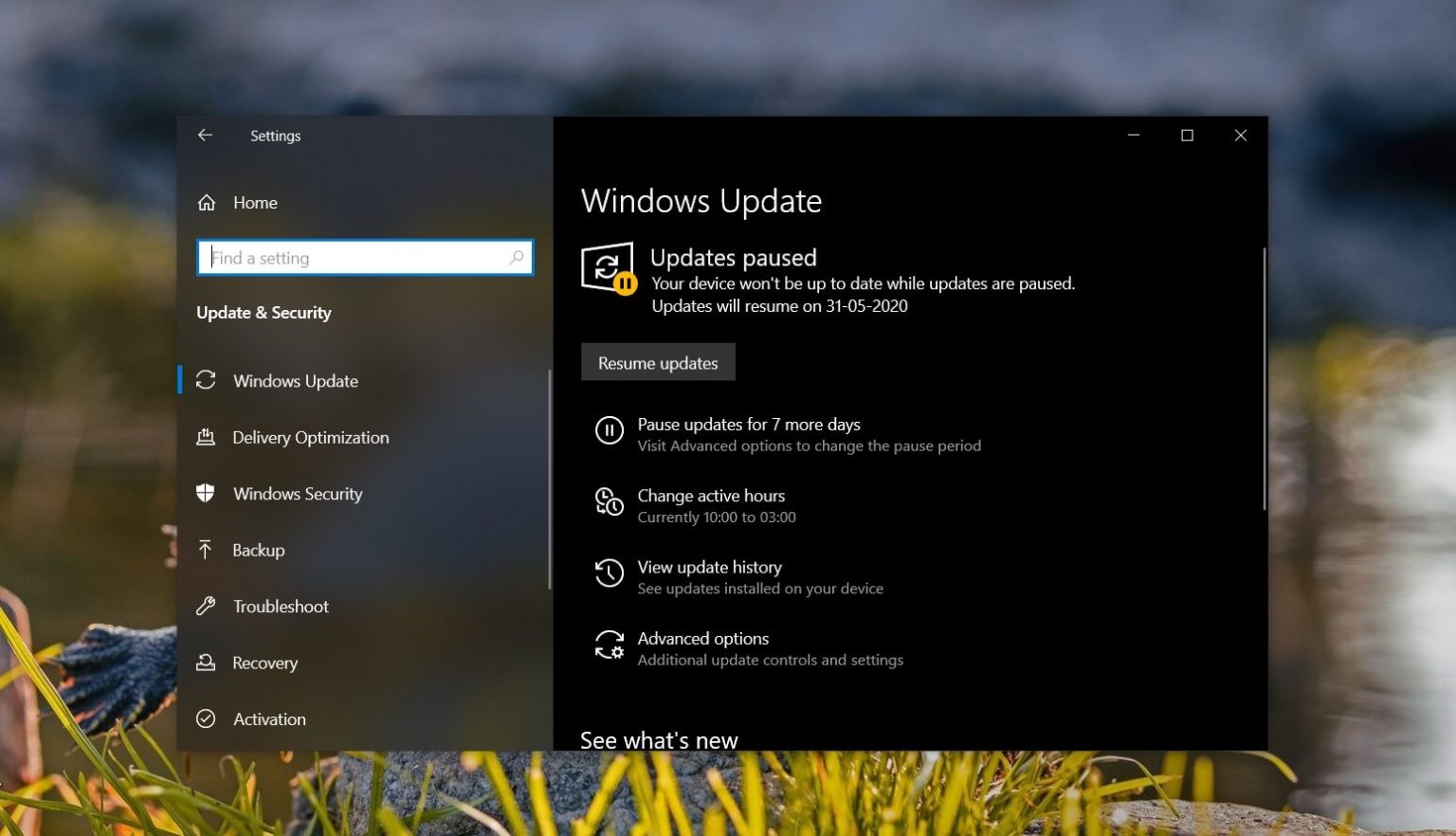 Windows 10 May 2020 Update to release over the next few days