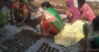 UP pushes for cow dung diyas this Diwali, income to be used for cow shelters