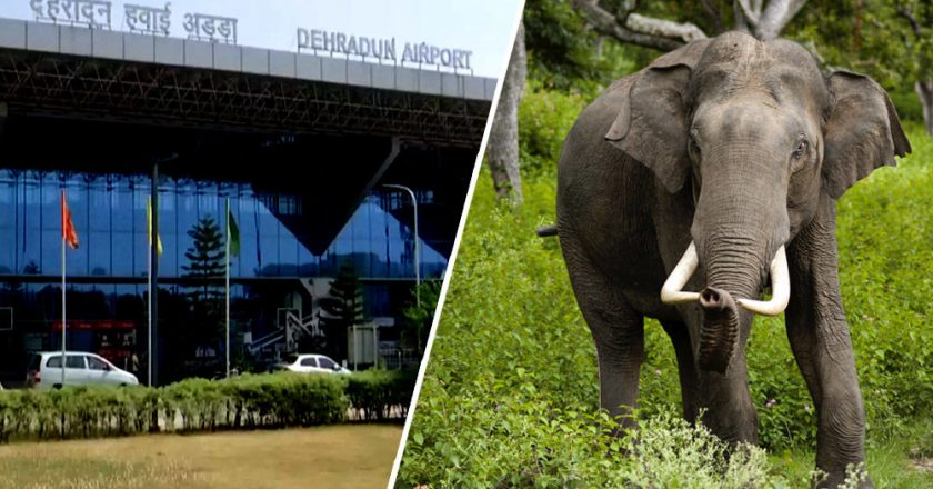 Denotification of Shivalik and expansion of Jolly Grant Airport two separate issues